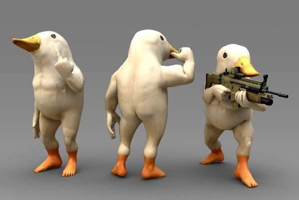肌肉发达的鸟,创意画家,另类图片