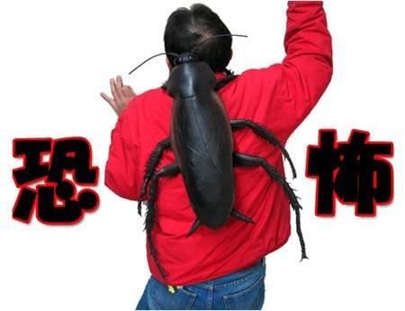 巨大蟑螂包,可怕周边,昆虫