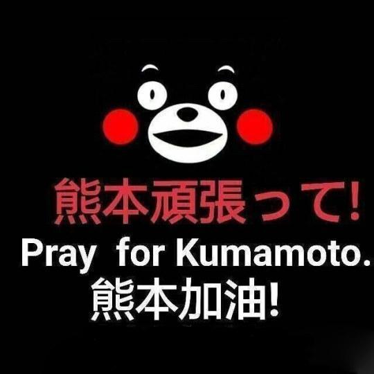 网友画熊猫为熊本祈福:加油,熊本熊!,熊本,熊本地址