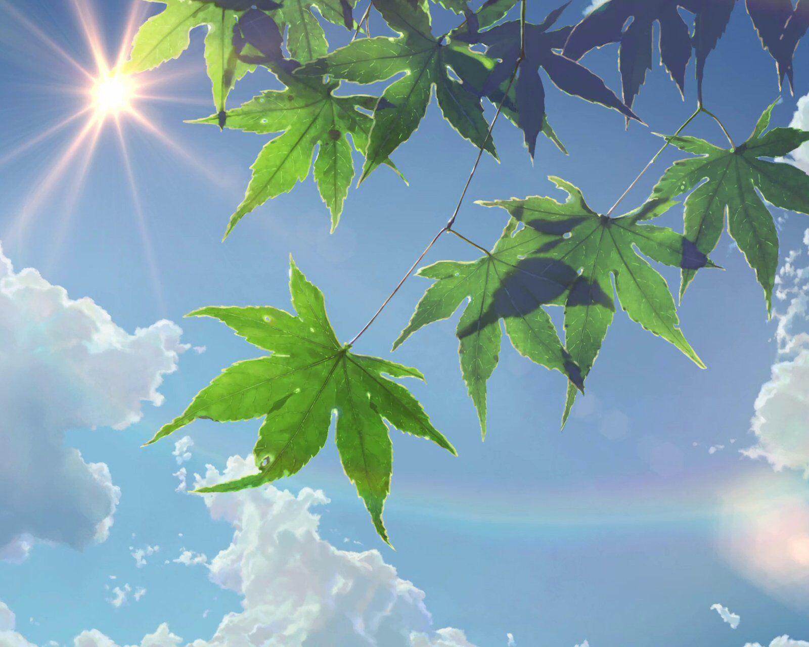 动态树叶图片大全大图