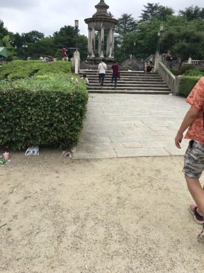 """说好的素质呢?日本""""宝可梦圣地""""鹤舞公园垃圾如山"""