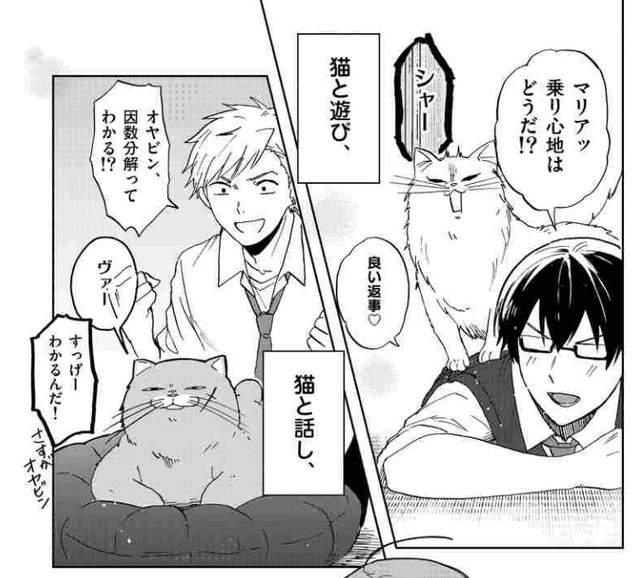 猫咪社团,雪永めりを,三ツ桥高校ねこ部!