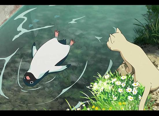 剧场动画《企鹅高速公路》公开预告PV,将于8月17日公开!