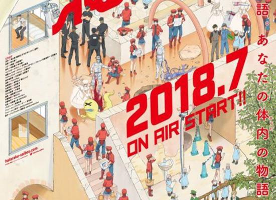 七月新番《工作细胞》PV第2弹公开 将于7月7日开播!