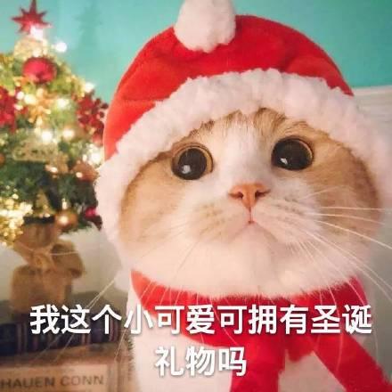 圣诞节,圣诞节表情包,表情包,沙雕表情包