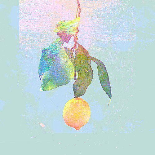 米津玄师,红白歌会,非自然死亡,lemon