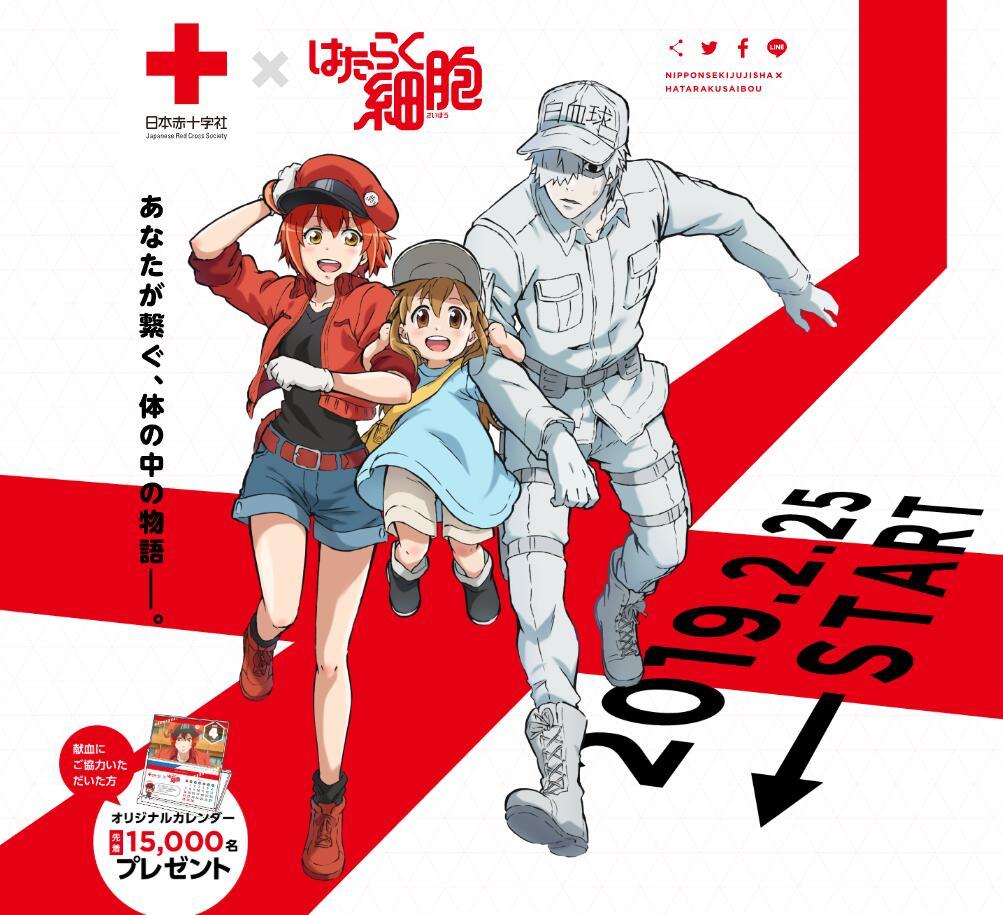 死宅血真好骗,《工作细胞》将与日本红十字会联动献血活动